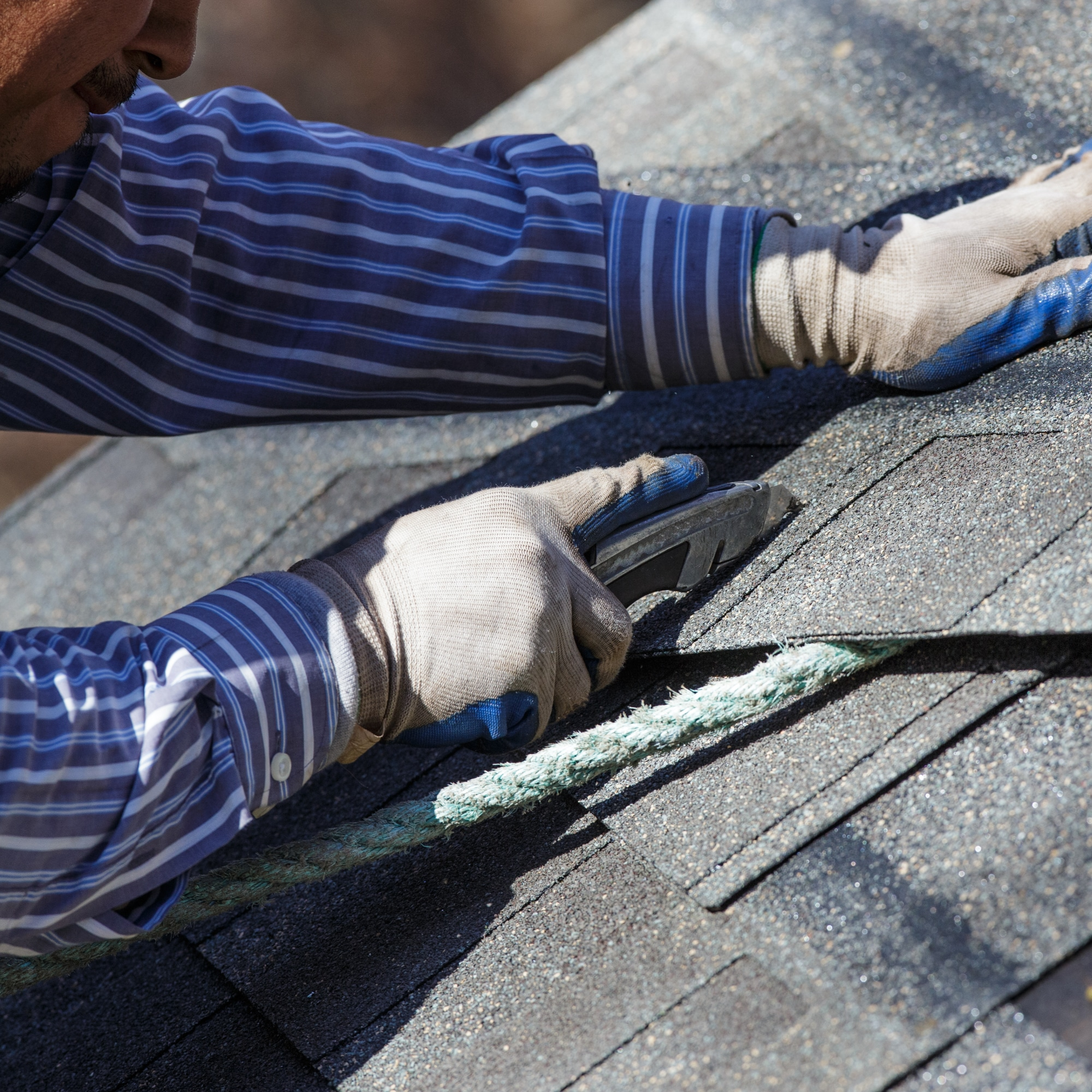 Services Roofing